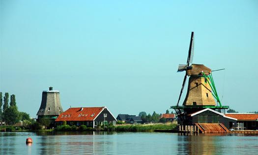 荷兰赏花一日游