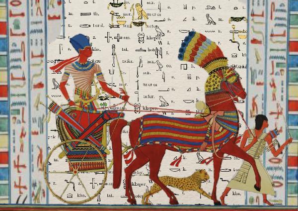 【落地签】埃及开罗+红海+卢克索7日游(两人起成团·自费体验热气球)