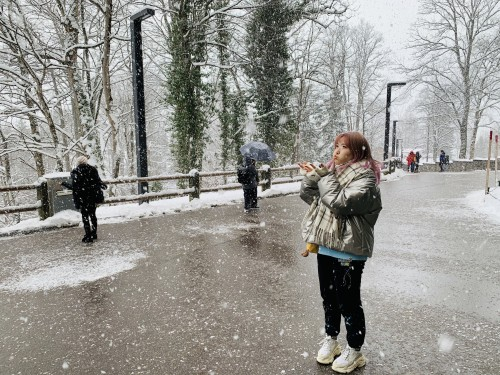 Munich Round Trip: New Swan Stone Castle+ Oberammergau Day Tour travel pictures